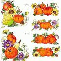 CLIPART! Pumpkins Corners & Borders @ Diddybag!